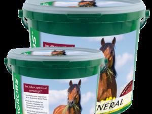 Agrobs Senior mineral dækker det daglige behov for vitamin, mineral, sporstoffer og aminosyrer hos seniorheste og heste med øget behov